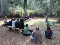 Sept forêts de la province de Gérone offrent des « bains de forêt », un produit de santé pionnier en écotourisme