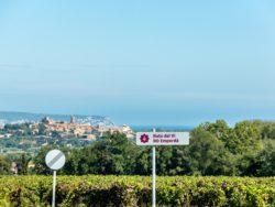 El Vívid, el mes de l'enoturisme a la Costa Brava, es posa en marxa amb un 70 % de les entrades venudes